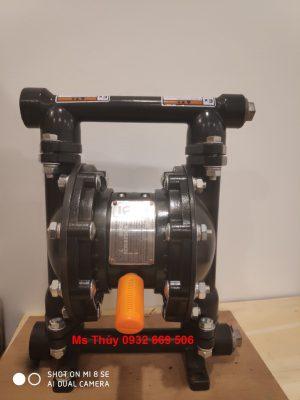máy bơm màng QBY3-25G Gang, bơm màng QBY3-25G Gang, bơm màng thân gang, QBY3-25G, QBY3