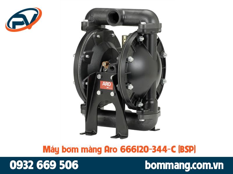Máy bơm màng Aro 666120-344-C (BSP)
